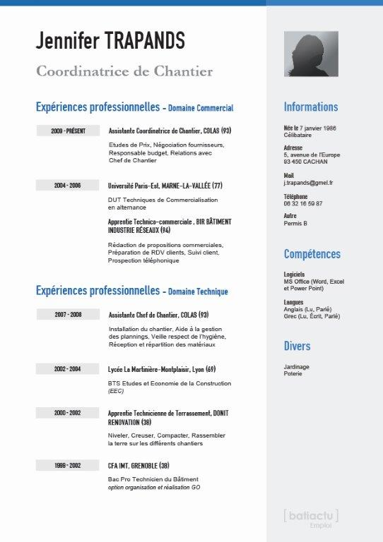 pin exemple de cv par comp u00e9tences page 2 on pinterest